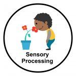 sensory-processing